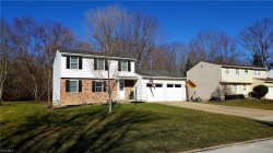 Photo of 10066 Pirates Trl, Reminderville, OH 44202 (MLS # 4080836)