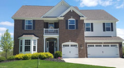 Photo of 9396 Grace Dr, Twinsburg, OH 44087 (MLS # 4082328)