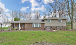Photo of 1610 Roosevelt Ave, Niles, OH 44446 (MLS # 4082917)