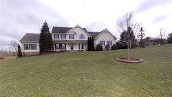 Photo of 12055 Marydale Dr, Chagrin Falls, OH 44023 (MLS # 4083071)