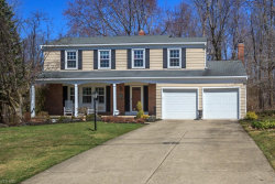 Photo of 7771 Skylineview Dr, Mentor, OH 44060 (MLS # 4083279)