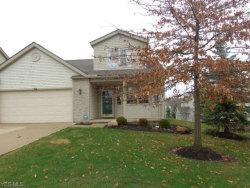 Photo of 3972 Falconswalk Ct, Stow, OH 44224 (MLS # 4083686)