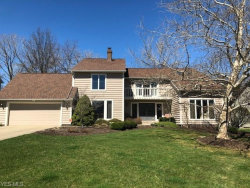 Photo of 32775 Aspen Glen Dr, Solon, OH 44139 (MLS # 4083967)
