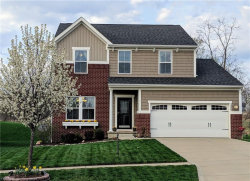Photo of 1476 Crescent Dr, Streetsboro, OH 44241 (MLS # 4084023)