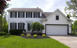 Photo of 10426 Springwood Cir, Twinsburg, OH 44087 (MLS # 4084094)