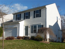 Photo of 3165 Fenmore Ln, Reminderville, OH 44202 (MLS # 4084591)