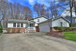 Photo of 8909 Briarbrook Dr Northeast, Warren, OH 44484 (MLS # 4085484)
