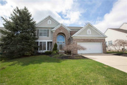 Photo of 9755 Burton Dr, Twinsburg, OH 44087 (MLS # 4085794)
