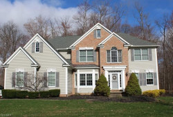 Photo of 680 South Sussex Ct, Aurora, OH 44202 (MLS # 4085886)