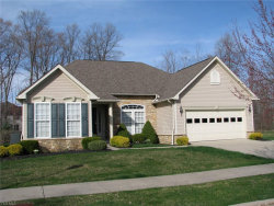 Photo of 9549 Angela Dr, Twinsburg, OH 44087 (MLS # 4086227)