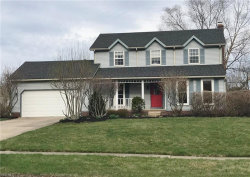 Photo of 5313 Young Rd, Stow, OH 44224 (MLS # 4086326)