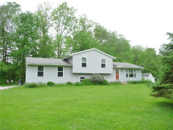 Photo of 12794 State Route 700, Hiram, OH 44234 (MLS # 4087943)