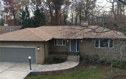 Photo of 9005 Evergreen Dr, Parma, OH 44129 (MLS # 4088579)