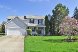 Photo of 2325 White Marsh Dr, Twinsburg, OH 44087 (MLS # 4089811)