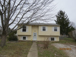 Photo of 9060 Wilverne Dr, Windham, OH 44288 (MLS # 4091816)