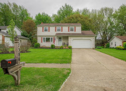 Photo of 7386 Ford Dr, Mentor, OH 44060 (MLS # 4093304)