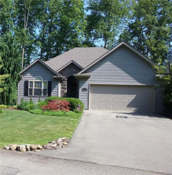 Photo of 11420 Campfire Cir, Canfield, OH 44406 (MLS # 4093687)