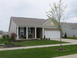 Photo of 8017 Amberley Dr, Mentor, OH 44060 (MLS # 4094136)
