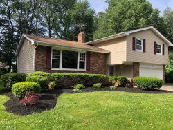 Photo of 7272 Clearmont Dr, Mentor, OH 44060 (MLS # 4096343)