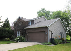 Photo of 7910 Champaign Dr, Mentor, OH 44060 (MLS # 4098738)