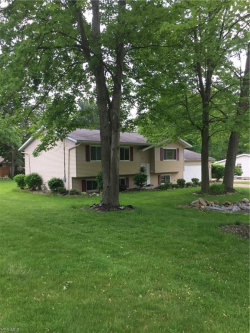 Photo of 6184 Althea Dr, Concord, OH 44077 (MLS # 4099162)