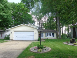 Photo of 173 Timberlane Dr, Elyria, OH 44035 (MLS # 4099852)