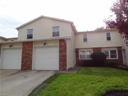 Photo of 8252 Lancaster Dr, Mentor, OH 44060 (MLS # 4104635)