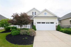 Photo of 7917 Newell Creek Dr, Mentor, OH 44060 (MLS # 4105977)