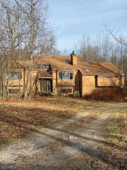 Photo of 17176 Wood Acre Trl, Chagrin Falls, OH 44023 (MLS # 4106026)