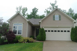 Photo of 9509 Angela Dr, Twinsburg, OH 44087 (MLS # 4106873)