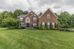Photo of 2799 Max Ct, Twinsburg, OH 44087 (MLS # 4107531)