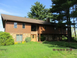 Photo of 6656 Booth Rd, Ravenna, OH 44266 (MLS # 4108387)