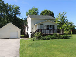 Photo of 9814 East Center St, Windham, OH 44288 (MLS # 4108628)