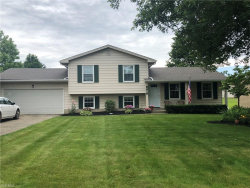 Photo of 8419 Hitchcock Rd, Boardman, OH 44512 (MLS # 4109320)