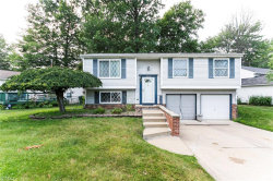 Photo of 5414 Oak Ridge Dr, Willoughby, OH 44094 (MLS # 4114375)