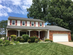 Photo of 5606 Clover Cir, Willoughby, OH 44094 (MLS # 4117415)