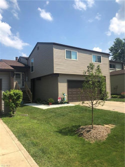 Photo of 7097 Windmill Ln, Unit 2B, Concord, OH 44060 (MLS # 4119244)