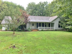 Photo of 11785 Frost Rd, Mantua, OH 44255 (MLS # 4120532)