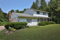 Photo of 8923 Jackson St, Mentor, OH 44060 (MLS # 4121038)