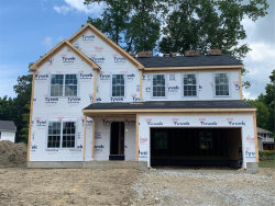 Photo of 3844 New Milford Rd, Rootstown, OH 44272 (MLS # 4125951)
