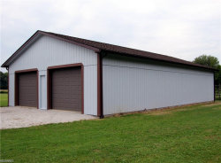 Photo of 10465 State Route 82, Windham, OH 44288 (MLS # 4131864)