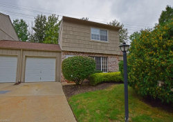 Photo of 9645 Ryan Dr, Mentor, OH 44060 (MLS # 4133376)