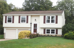 Photo of 7992 Gallowae Ct, Mentor, OH 44060 (MLS # 4133745)