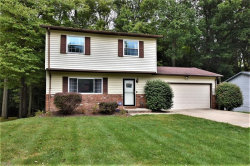 Photo of 11309 Heritage Dr, Twinsburg, OH 44087 (MLS # 4134533)