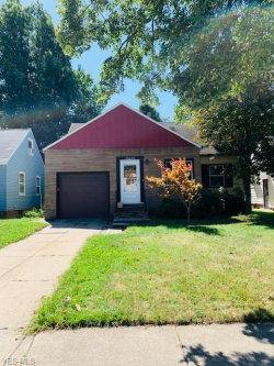 Photo of 25670 Drakefield Ave, Euclid, OH 44132 (MLS # 4138221)