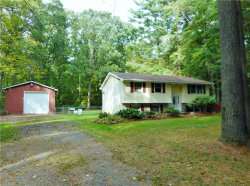 Photo of 9769 Wolfe Rd, Windham, OH 44288 (MLS # 4139387)