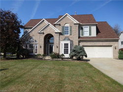 Photo of 3005 Irena Ln, Twinsburg, OH 44087 (MLS # 4141423)