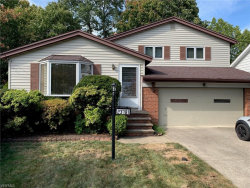 Photo of 23781 Greenwood Rd, Euclid, OH 44117 (MLS # 4141911)