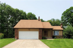 Photo of 2100 Apple Dr, Euclid, OH 44143 (MLS # 4142075)