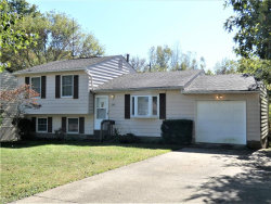 Photo of 348 Silver Meadows Blvd, Kent, OH 44240 (MLS # 4142226)